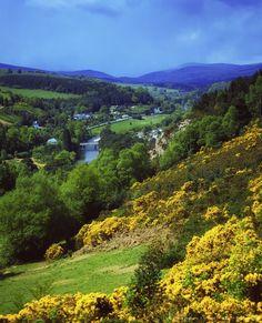Vale of Avoca, County Wicklow, Ireland