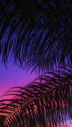 Sunset Palms Neon Wallpaper, Homescreen Wallpaper, Summer Wallpaper, Iphone Background Wallpaper, Aesthetic Pastel Wallpaper, Aesthetic Wallpapers, Apple Wallpaper, Sky Aesthetic, Purple Aesthetic