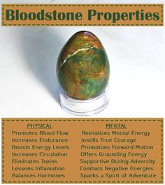 A Bloodstone properties card typed out over a heliotrope stone, describing Bloodstone benefits. Reiki Stones, Crystal Healing Stones, Stones And Crystals, Minerals And Gemstones, Crystals Minerals, Rocks And Minerals, Zen, Crystal Guide, Spirituality