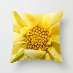 Dahlia flower blooming in the summer heat! Lovely shade of yellow to add a touch of summer to the home. To purchase, choose size and quantity