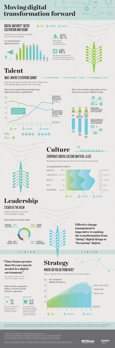 Startup infographic : Infographic: Moving Digital Transformation Forward
