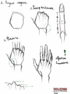 Don& ignore these notes. by jasmine . by jasmine – drawing sketch …… Don& ignore these notes. by jasmine – drawing sketch … – Do not ignore this information tips by Jasmin – drawing sketches – – - Anatomy Sketches, Anatomy Drawing, Art Drawings Sketches, Anatomy Study, How To Draw Anatomy, Art Illustrations, Hand Drawing Reference, Art Reference Poses, Design Reference
