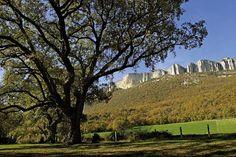 #ParqueNaturalLokiz #TurismoNavarra  #EstellaLizarra  #TurismoEstella http://www.casaruralnavarra-urbasaurederra.com