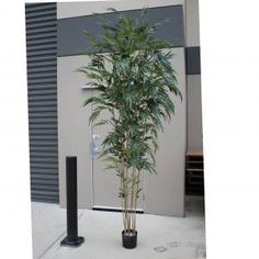 Greenery Imports Artificial Plants. We are Australia's Largest Importer of quality Artificial Plants and Fibreglass pots. We deliver Australia Wide.