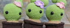 Cactus - Aprende con Babuska