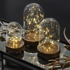 Just add batteries to these Pre-Lit String Light Cloches for a romantic and magical effect! Available in three different sizes, these glass cloches with wood bases are an easy way to add festive lights to your home.