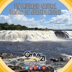 24 de agosto. Día de los parques naturales  #Guayana #naturaleza  #Venezuela #nature #nationalparks #Century21