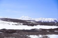 Alaska Range, and Denali summit