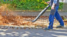 Leaf Blower CFM vs MPH: Understand Your Blower Better | Archute