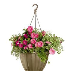Jumbo Self-Watering Hanging Basket would love to have this LARGE basket