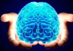 Il nome del progetto rende già l'idea: Re-Anima. Scienziati americani hanno ottenuto il nullaosta dei National Institutes of Health e di autorità indiane per dare il via al primo studio mirato a capire se sia possibile riportare in attività il cervello delle persone clinicamente morte. A portarlo avanti una società biotech d'Oltreoceano, la Bioquark, che sta per reclutare 20 pazienti …