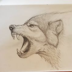 sketching Wolf next step some details. WIP – biraz detay 🙂 sketching Wolf next step some details. Animal Art, Sketches, Animal Drawings, Drawing Artist, Wolf Sketch, Anime Wolf Drawing, Animal Sketches, Anime Animals, Drawing Sketches