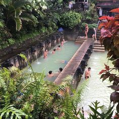 After snorkeling we stopped at a natural hot spring. Slightly sulfur smelling but quite nice ☺ #Bali #banjarhotspring