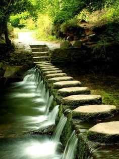 Stone path in Newcastle, Ireland