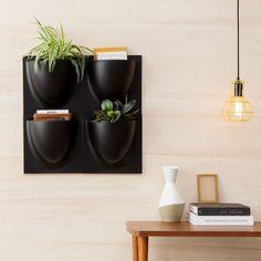 Vertikale Pflanzenkunde