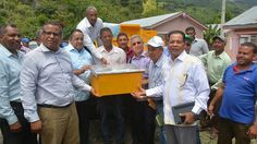 Gobierno sembrará 10 mil tareas de café y aguacate en zona montañosa de Azua