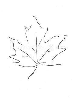 Maple Leaf // Original Design // by EssentialLinesByErin on Etsy, $20.00