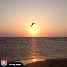 Buenos días Falcon! Fotografía de: @luismarval Utilizando el HT #Igersfalcon . .  Más cerca y se quema! . .  #picoftheday #photooftheday #igersvenezuela #socialmedia #photo #sunrise  #instagood #sunset #falcon #venezuela #paraguana #elnacionalweb #phoneography #pic #share #pfgcrew #sky #puntofijoguia  #igersfalcon by @igersfalcon