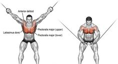High cable cross-over exercise best chest workout, chest workouts, chest exercises, Cable Workout, Gym Workout Tips, Street Workout, Cycling Workout, Workout Fitness, Best Chest Workout, Chest Workouts, Chest Exercises, Bike Workouts