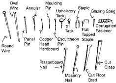 Types of Nails