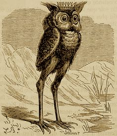 Stolas, who is associated with astronomy and poisonous plants.