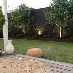 Ailsa Street – Ascher Smith - All About Backyard Privacy, Backyard Garden Design, Backyard Fences, Backyard Plants, House Landscape, Garden Landscape Design, Fence Landscaping, Hydrangea Landscaping, Fence Design