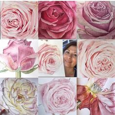 Amandas Watercolour Art by AmandasArtZA on Etsy Watercolor Rose, Watercolor Paper, Meet The Artist, Your Paintings, Beautiful Roses, Pastel Pink, Art For Sale, Craft Supplies, Spring