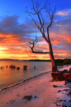 taylors sunset by David Gibbs