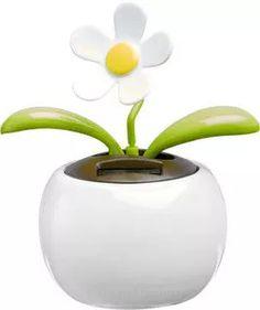 Lill, päikesega avanev - http://www.reklaamkingitus.com/et/autotarvikud/4176/Lill%2C+p%C3%A4ikesega+avanev-PRIM000835.html