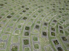 cinder blocks interplanted with low grass - moss would also look good     A Sense of Place: Beautiful Paving.