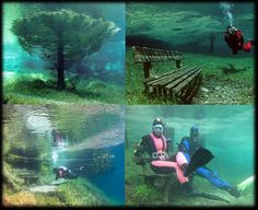 Austria's Green Lake: The park that becomes completely underwater during Summer