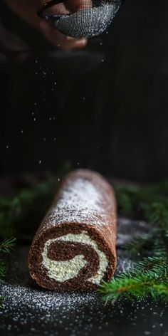 This Low Carb Chocolate Roulade or as some can call it Keto Chocolate Swiss Roll Cake is not only Sugar-free but Grain-free, gluten-free and also scrumptiously soft, fluffy and creamy, filled with cocoa aroma. With only 2g of carbs, this perfect Keto Dessert choice is for your Christmas table or just a party you are planning to attend. Chocolate Swiss Roll, Low Carb Chocolate, Chocolate Roulade, Low Carb Keto, Cake Recipes, Rolls, Gluten Free, Baking, Desserts