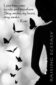 "Let""s stay awake ..."