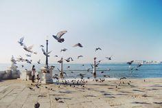 Lisboa by Alessandro Merlo on Flickr.
