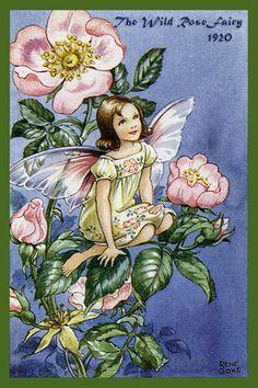 Olde America Antiques   Quilt Blocks   National Parks   Bozeman Montana : Rene Cloke Fairies - The Wild Rose Fairy
