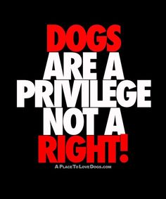 Dogs Are A Privilege Not A Right | Dog Quote