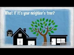 Insurance 101 - Tree Damage.    [sociallocker][/sociallocker] From heavy winds to ice and snow, all kinds of weather can bring tree limbs or even entire trees crashing down. Will your insurance policy cover the damage? source