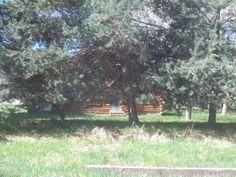 PT EAGLE IDAHO. CABIN BEHIND TREES. JULY 15