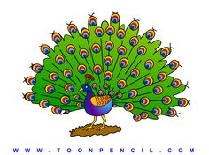 310-Learn How to draw a Peacock for kids, step by step, kids ...