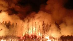 A new study says that since 1984, heightened temperatures and aridity have caused fires to spread across twice as much area as they would have otherwise.