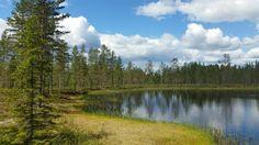 Schwedens Natur ist wirklich sehenswert.