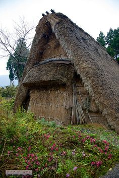 Gokayama by davegolden, via Flickr