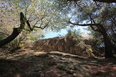 王の岩/王の御座の岩 - WolMyeongDong(キリスト教福音宣教会)