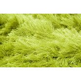 Found it at Wayfair Supply - Elements Neon Lime Green Area Rug