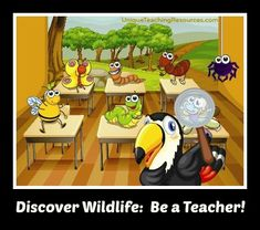Discover wildlife: be a teacher!