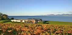 haliday house, Ruby Bay, Nelson, NZ :: novak+middleton