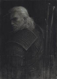 All things related to The Witcher. Witcher 3 Art, The Witcher Books, The Witcher Game, The Witcher Geralt, Witcher 3 Wild Hunt, Ciri, Power Rangers, Witcher Wallpaper, Outdoor Fotografie
