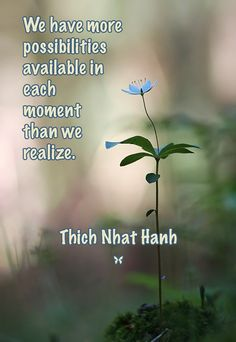 We have more possibilities available in each moment than we realize. – Thich Nhat Hanh ..*