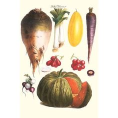 Buyenlarge 'Vegetables: Melon, Purple Carrot, Cherry' by Philippe-Victoire Levêque de Vilmorin Graphic Art
