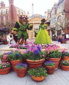 Epcot Flower and Garden 2015